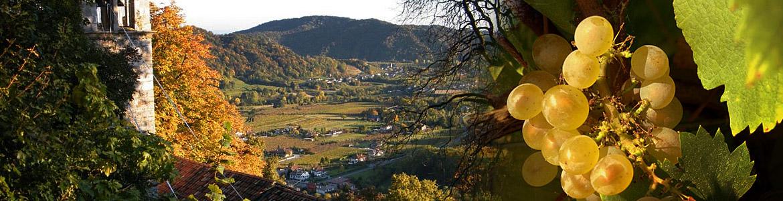 Friuli Colli Orientali e Ramandolo